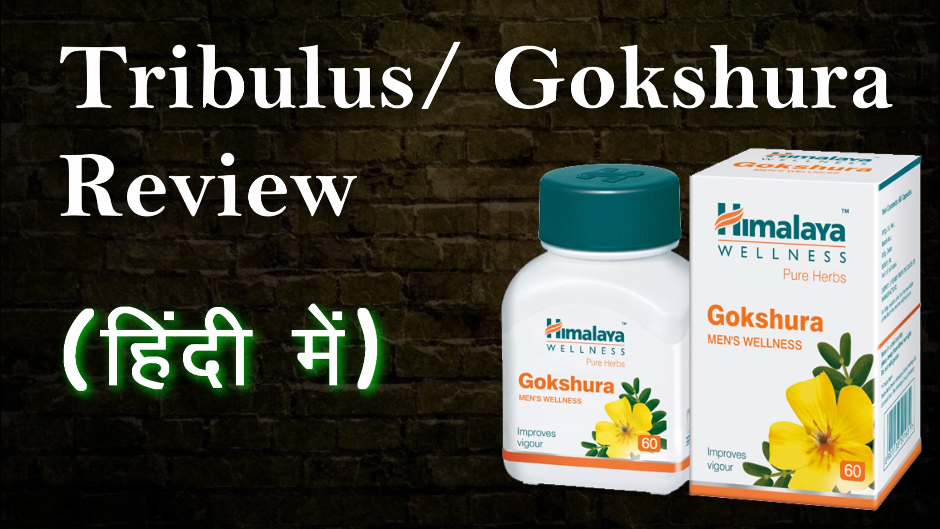 Gokshura as a test booster | Tribulus Review